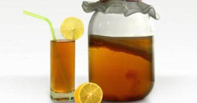 Чайный гриб в косметических целях, уход, полезные свойства, противопоказания