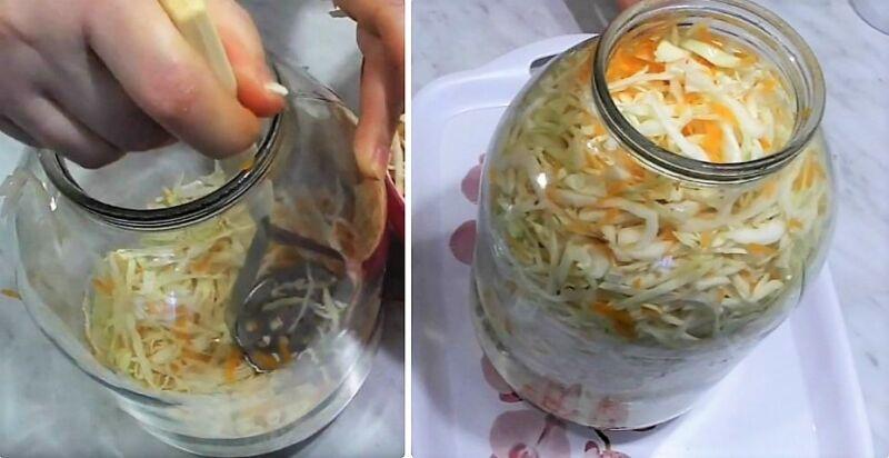 классическая квашеная капуста